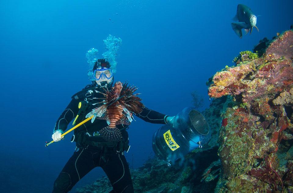 Roger Muller, Jr in Cayman Islands