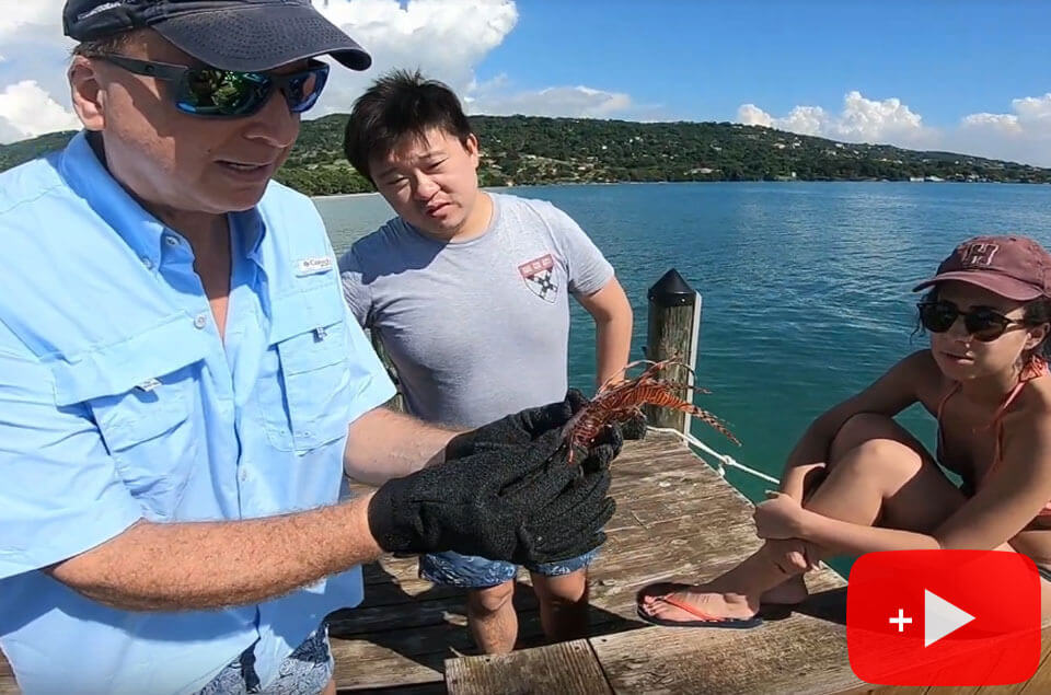 Roger cleaning a lionfish