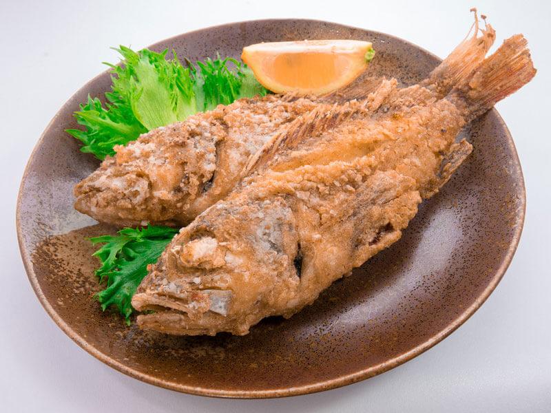 Lionfish Eating Jamaica