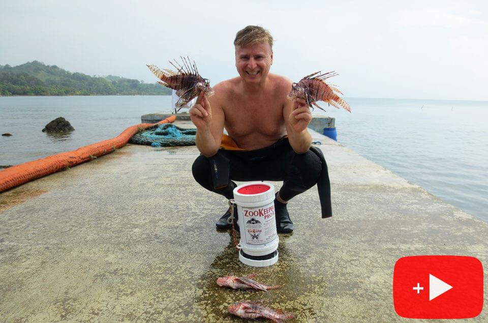 Lionfish hunting Panama