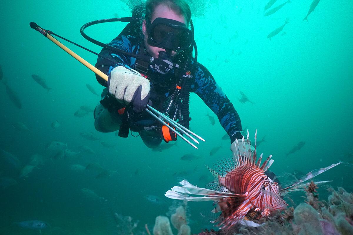 Alex Fogg spearing Lionfish