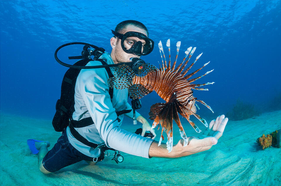 Alex Fogg and Lionfish