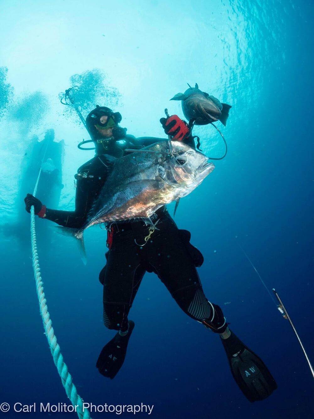 Adam Wise diving