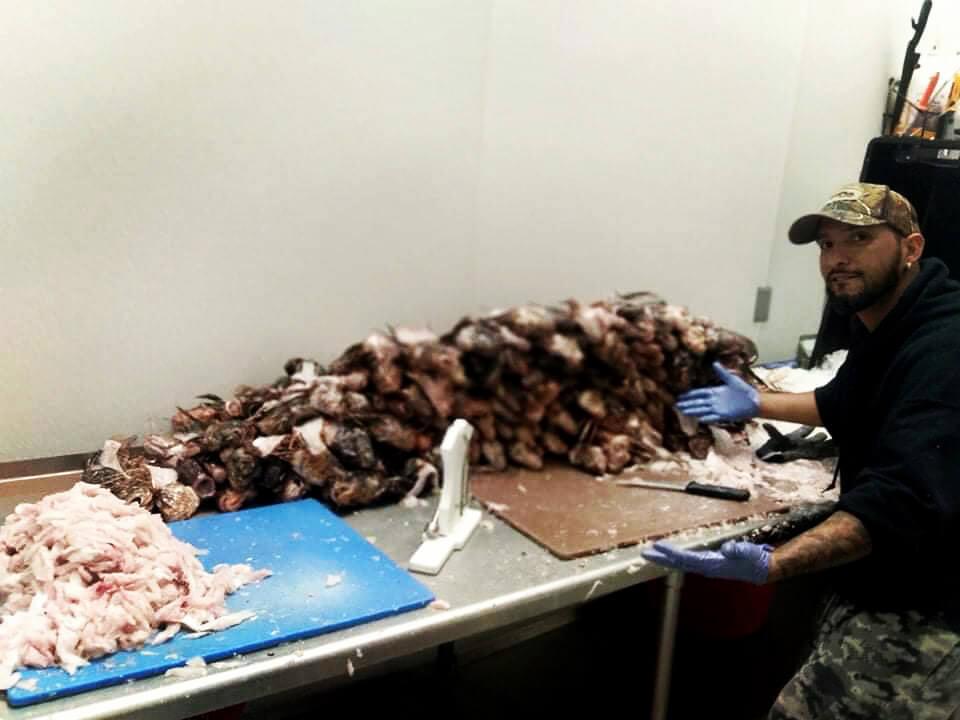 James Alicea filleting lionfish