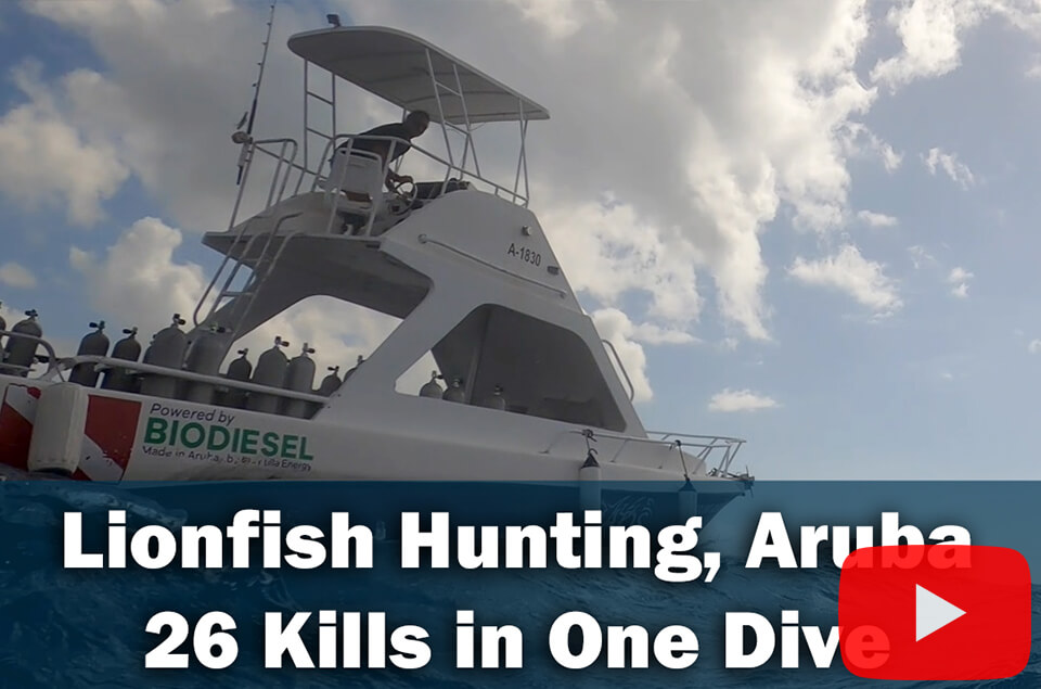 Lionfish Hunting Aruba - 26 kills in one dive